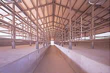 効率的な牛舎構造