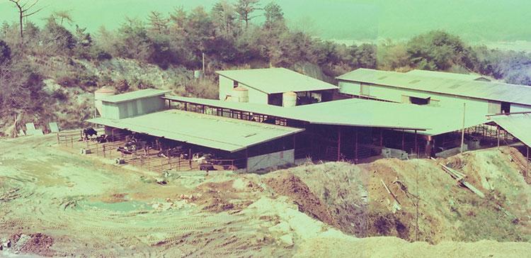 安堂グループの歴史物語第9話 親之が整備した牧場(昭和50年頃) 写真