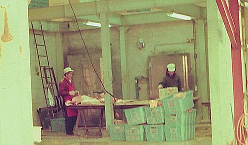 安堂グループの歴史物語第10話 写真 自宅横の牛舎を改装して作った牛肉カットセンター